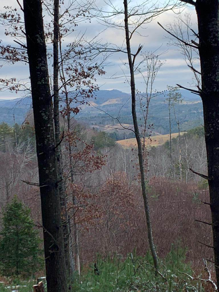 TBD Crackers Neck Rd - Photo 1