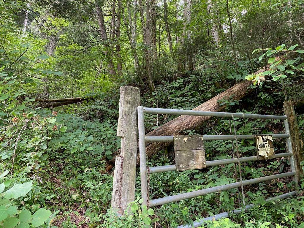 TBD Cove Creek Road - Photo 1