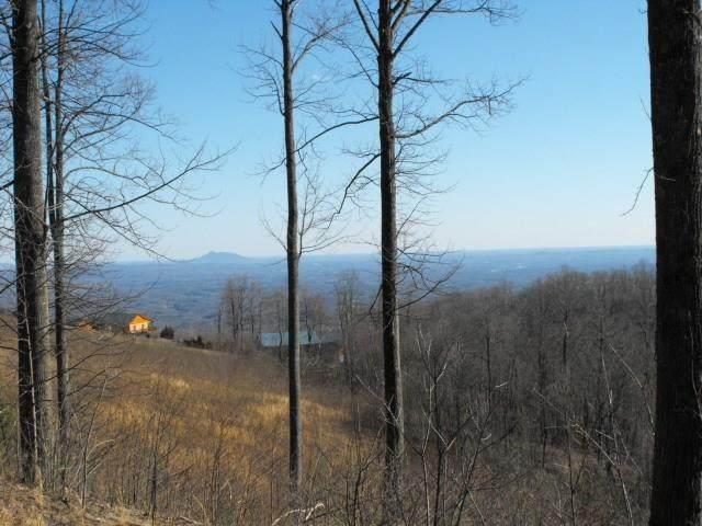 100 Cabin Ridge Trail - Photo 1