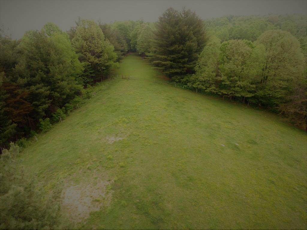 TBD Crab Orchard Rd - Photo 1