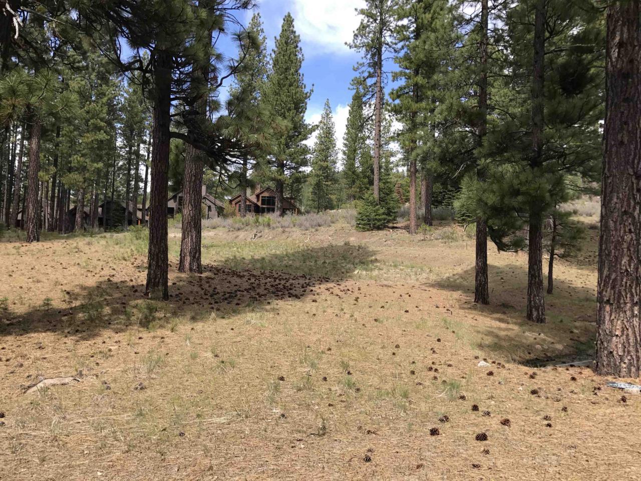 153 Saddle Ridge Road - Photo 1