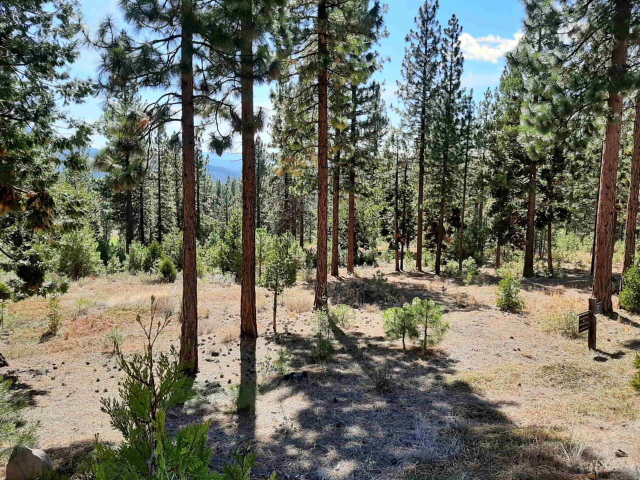 486 Grizzly Ranch Road - Photo 1