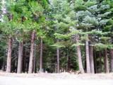 6460 Cascade Drive - Photo 1