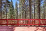 11747 Bull Pine Trail - Photo 3