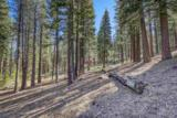 316 Skidder Trail - Photo 21