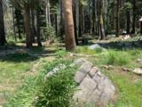 21164 Donner Pass Road - Photo 11