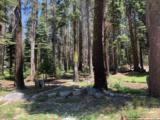 21164 Donner Pass Road - Photo 17