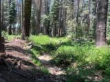 21164 Donner Pass Road - Photo 4