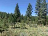 1865 Grizzly Ranch Road - Photo 1