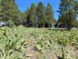 14482 Alder Creek Road - Photo 15