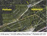 51139 Jeffery Pine Drive - Photo 16