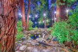 60 Tolowa Trail - Photo 21