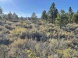 0 Overland Trails Road - Photo 15
