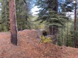 13079 Hillside Drive - Photo 7