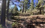 13952 Alder Creek Road - Photo 5