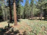 95 Big Grizzly Road - Photo 7