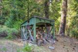 14 Carvin Creek Highway 49 - Photo 10
