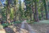 14 Carvin Creek Highway 49 - Photo 9