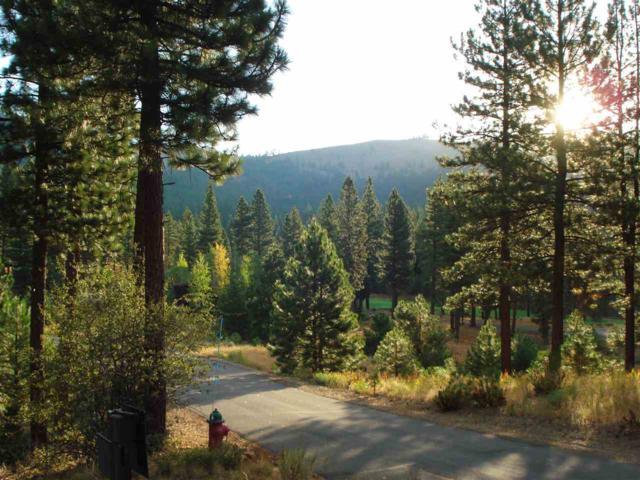 291 Blacktail Ridge, Portola, CA 96122 (MLS #20211349) :: Becky Arnold Real Estate at Chase International