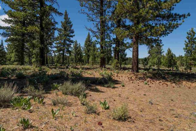 7985 Lahontan Drive, Truckee, CA 96161 (MLS #20211404) :: Becky Arnold Real Estate at Chase International