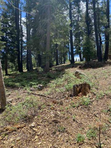 12685 Zurich Place, Truckee, CA 96161 (MLS #20211480) :: Becky Arnold Real Estate at Chase International