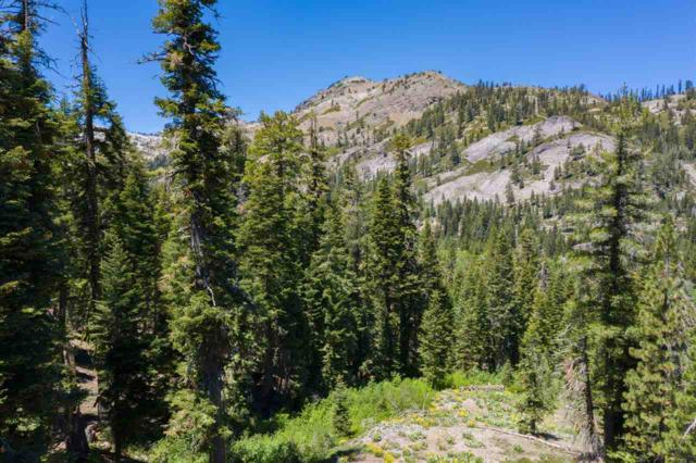 1410 Chateau Place, Alpine Meadows, CA 96146 (MLS #20211494) :: Becky Arnold Real Estate at Chase International