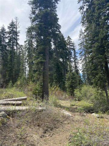 14660 Devils Peak Road, Truckee, CA 96161 (MLS #20211496) :: Becky Arnold Real Estate at Chase International