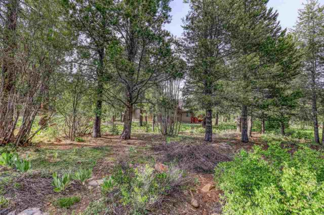 12349 Springbrook Place, Truckee, CA 96161 (MLS #20211505) :: Becky Arnold Real Estate at Chase International