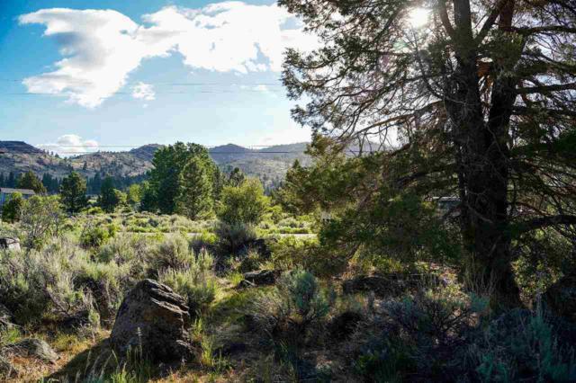 561 Longhorn Drive, Loyalton, CA 96118 (MLS #20211527) :: Becky Arnold Real Estate at Chase International
