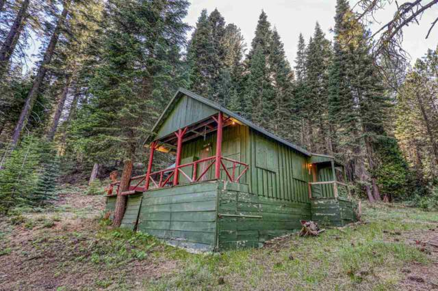14 Highway 49, Sierra City, CA 96125 (MLS #20211687) :: Becky Arnold Real Estate at Chase International