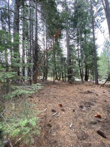 7138 8th Avenue, Tahoma, CA 96142 (MLS #20211827) :: Becky Arnold Real Estate at Chase International
