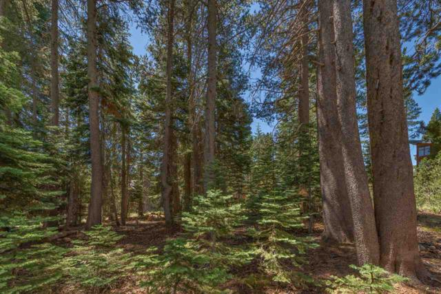 8256 Muir Court, Soda Springs, CA 95728 (MLS #20211884) :: Becky Arnold Real Estate at Chase International