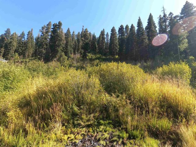 1051 Snow Crest Road, Alpine Meadows, CA 96146 (MLS #20212413) :: Becky Arnold Real Estate at Chase International