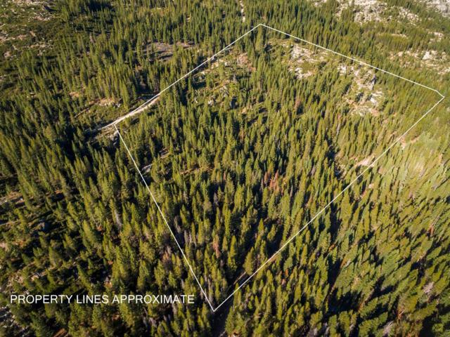 11417 Lola Montez Road, Truckee, CA 95161 (MLS #20212450) :: Becky Arnold Real Estate at Chase International