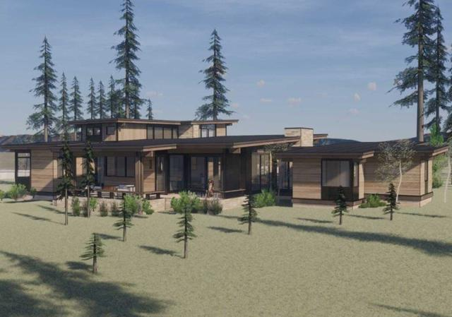 705 John Mckinney, Truckee, CA 96161 (MLS #20212558) :: Becky Arnold Real Estate at Chase International