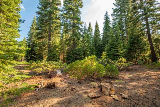 8406 Valhalla Drive, Truckee, CA 96161 (MLS #20211523) :: Becky Arnold Real Estate at Chase International