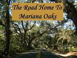 3393 Mariana Oaks Drive - Photo 35