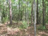 TBD Tallavana Trail - Photo 5