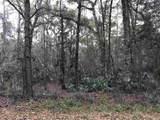 Lot 15 Fig Tree Lane - Photo 2