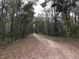 Lots 12,13,14 Fig Tree Lane - Photo 1