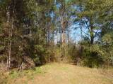 Lot 10 Spring Meadows Road - Photo 12