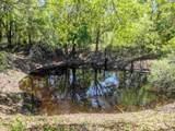 - Natural Bridge Trail - Photo 13