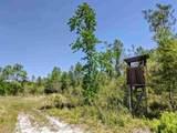 - Natural Bridge Trail - Photo 15