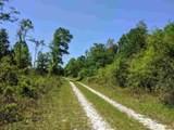 - Natural Bridge Trail - Photo 24