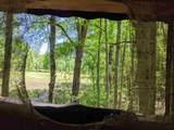 - Natural Bridge Trail - Photo 9