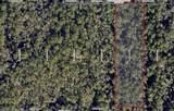 Track B Lutterloh Road - Photo 1