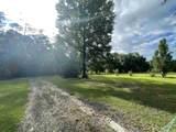 12124 Whitehouse Road - Photo 3