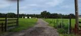 7139 Valhalla Ranch Drive - Photo 3