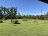 29318 County Road 379 - Photo 16