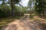 3308 Gallant Fox Trail - Photo 20